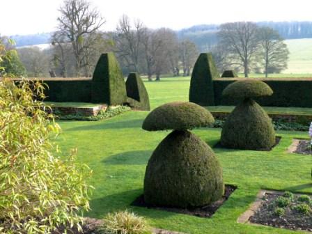 hintonampner yews