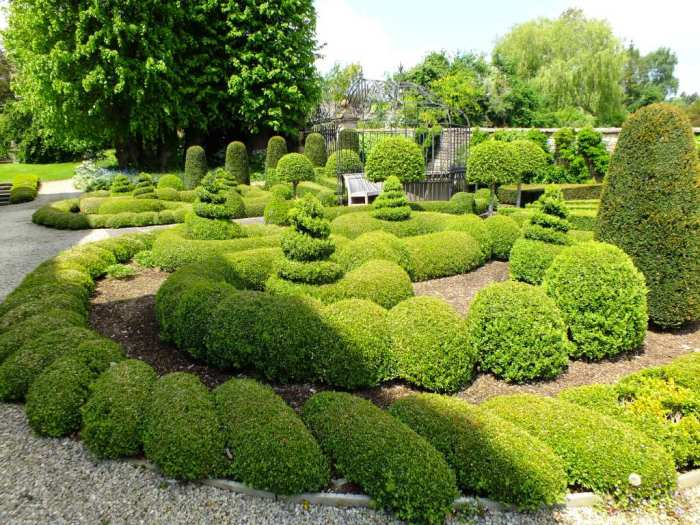 topiary at the front of the house