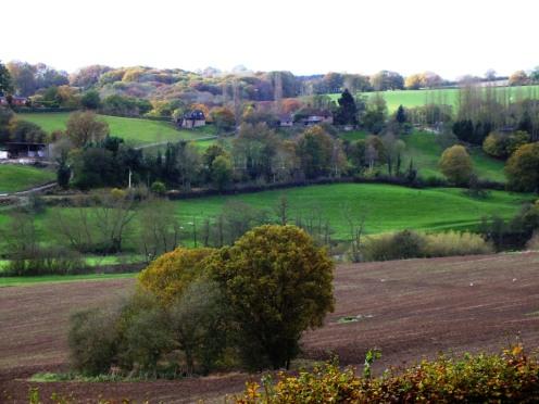 View from Arley Arboretum