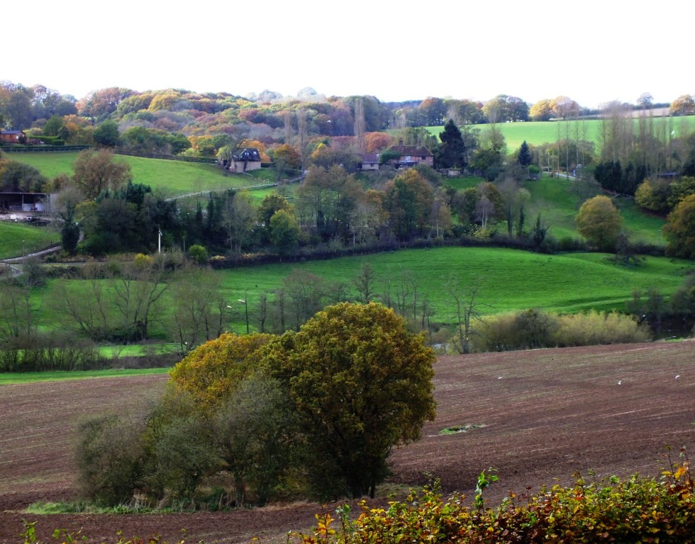 View from Arley Arboretum