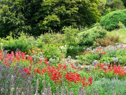 Garden View (4)