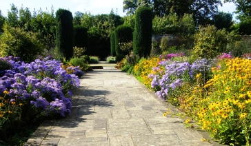 Autumn Borders in the Walled garden
