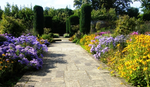 Autumn Borders in the Walled garden