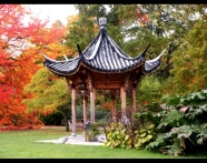 Pagoda in Autumn
