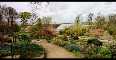 Wisley Glasshouse from the Rock Garden