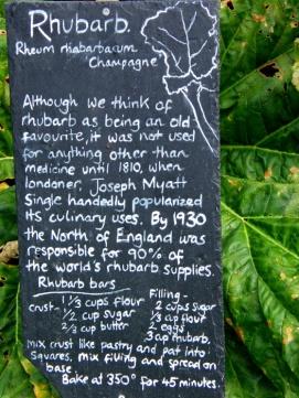 Chalk Board - Rhubarb Pie
