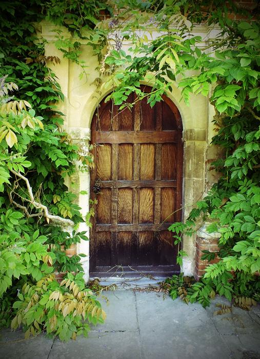 Door hidden by Wisteria