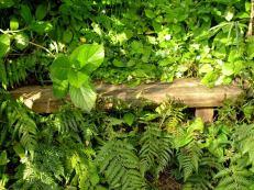 Hidden bench