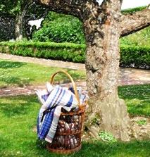 Pick up a Picnic blanket