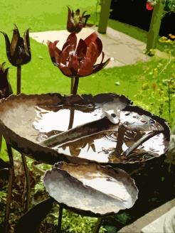 Water-lily bird bath