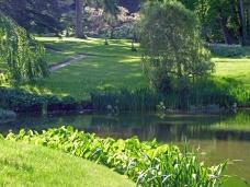 Island Pond