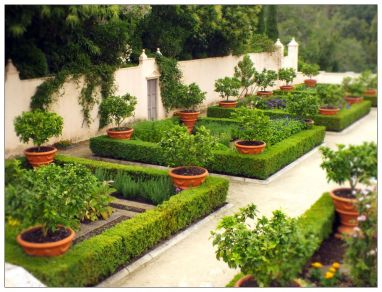 Regular, geometric planting