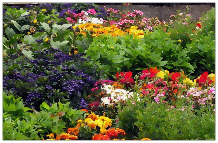 Jewel-like planting