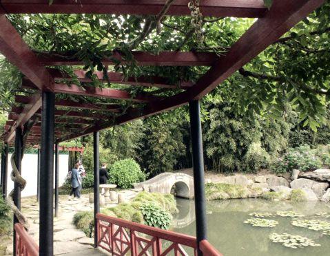 The Wisteria Bridge