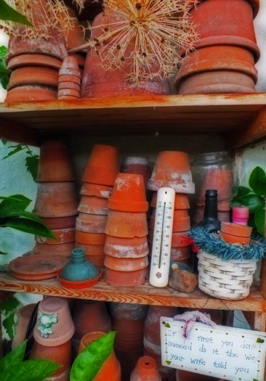 Lots of pots