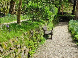 And a bench of course... backed by bluebells