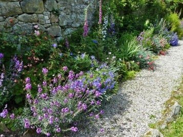 hardy geraniums, foxgloves, lupins and delphiniums
