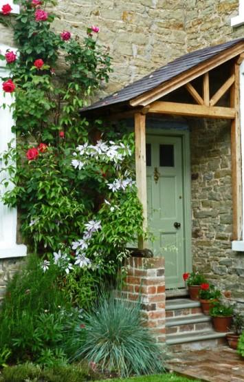 Roses around the door