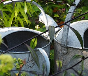 Old fashioned watering cans