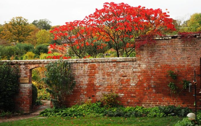 Garden Portrait: Croft Castle Walled Garden