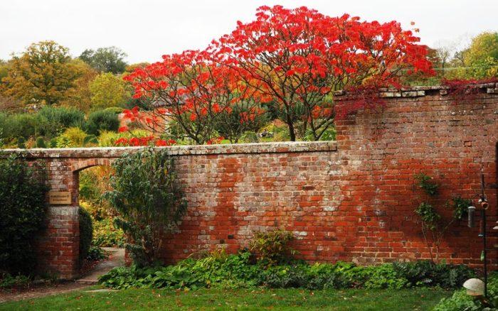 Garden Portrait: Croft Castle WalledGarden