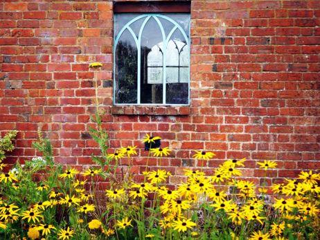 Potting shed window