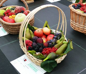 Pretty fruit baskets