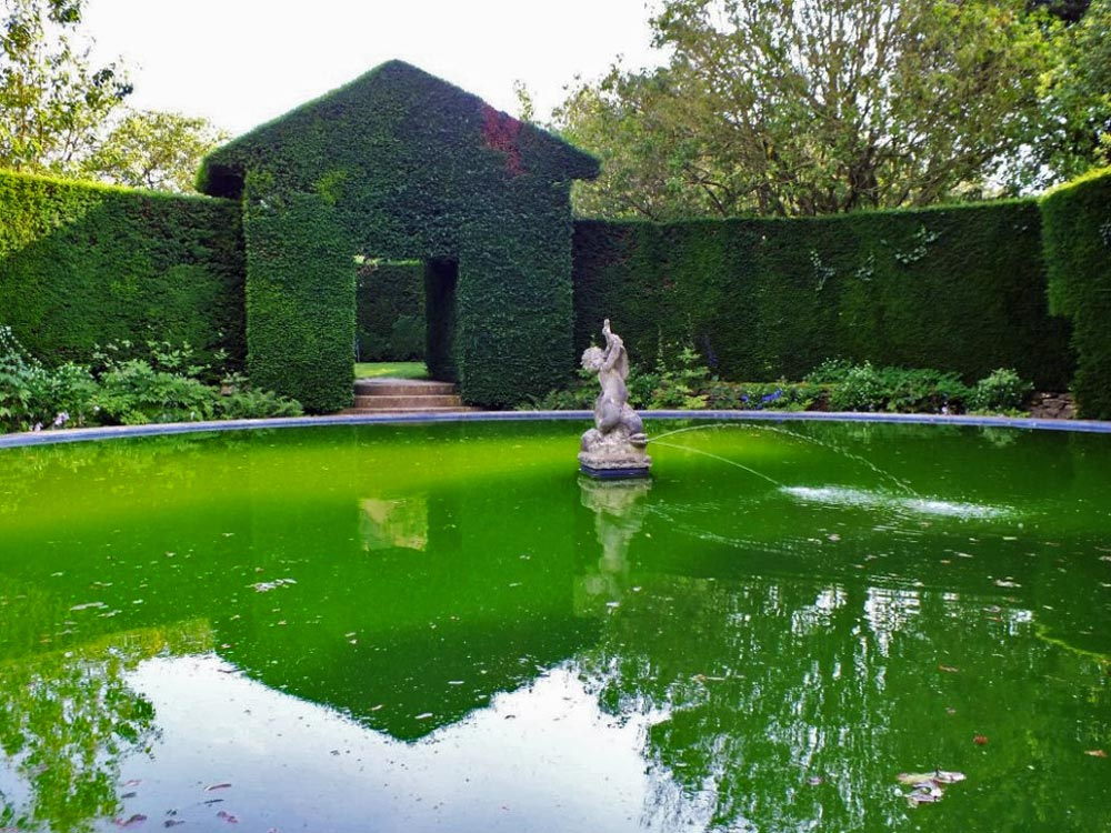 NT Hidcote Bathing Pool