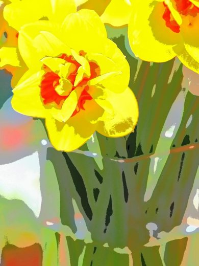 5--minutes-daffodils (7)