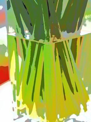 5--minutes-daffodils (8)