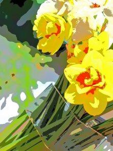 5--minutes-daffodils (9)
