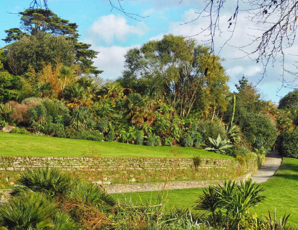 The Lawn Path