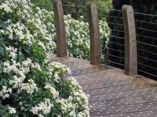 Garden Access Bridge