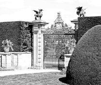 Welsh dragon ornamental gate