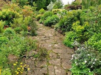 garden view (3)
